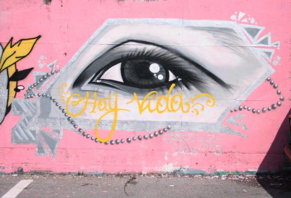 graphic-designer-freelance-graffiti-murales-hay-vida