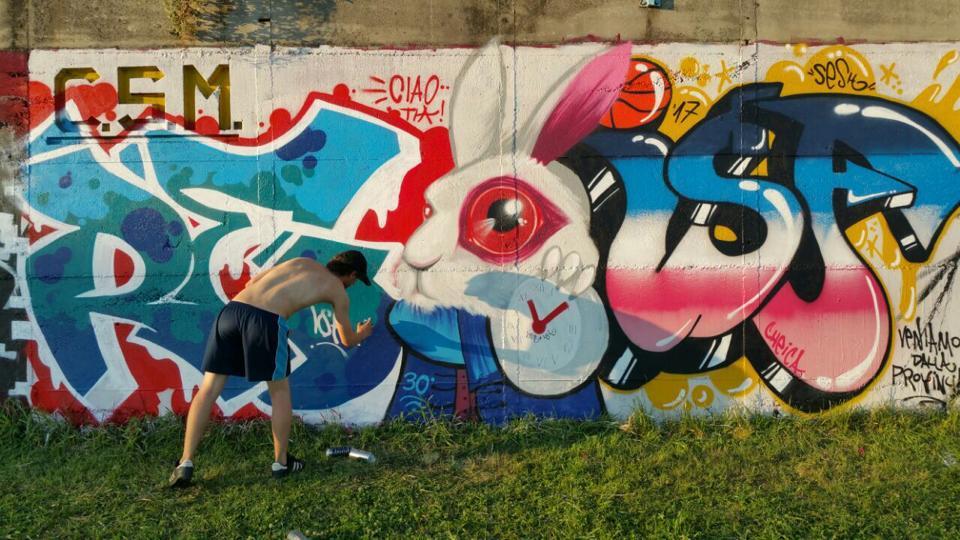graphic-designer-freelance-graffiti-murales-bianconiglio